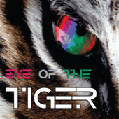 Eye of the Tiger (Single)