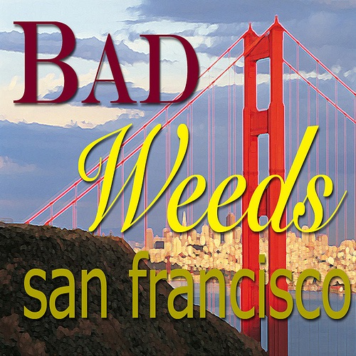 - Bad Weeds San Francisco *Queer!*