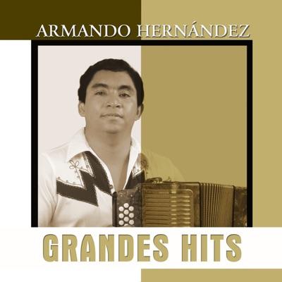 Grandes Hits: Armando Hernández - Armando Hernandez