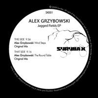 Alex Grzybowski Jagged Fields EP