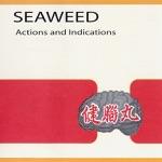 Seaweed - Antilyrical