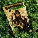 Boom Boom Vibration & P. Renna, A. D'Ascola - Dubrumors Rmx (feat. Alborosie)