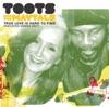 True Love Is Hard to Find (feat. Bonnie Raitt) - Single, Toots & The Maytals