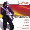 20th Century Rocks: 60's Rock Bands - Wild Thing (Re-Recorded Versions)