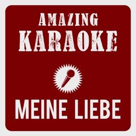 meine liebe meine stadt mein verein karaoke version originally performed by domst rmer. Black Bedroom Furniture Sets. Home Design Ideas