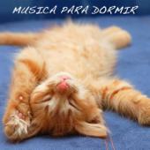 Música para Dormir: Música Relajante, Música de Meditación, Hilo Músical, Canción de Cuna
