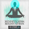 Mindfulness: Meditation, Ivar Vehler & Mark Williams