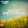 Sound Impressions, Vol. 5