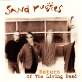 Sand Rubies - Can't Put Your Arms Around a Memory