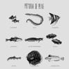 Memória De Peixe - Memória De Peixe