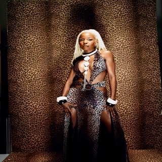 brenda fassie weekend special free mp3 download