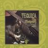 Tequila ジャケット写真