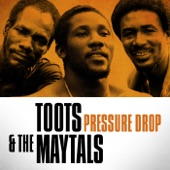 Toots & The Maytals - I Need Your Love