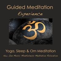Guided Meditation Experience: Yoga, Sleep & Om Meditation