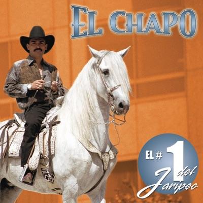 El # 1 del Jaripeo - El Chapo De Sinaloa