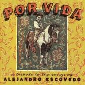 Alejandro Escovedo - Break This Time