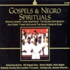 Gospels & Negro Spirituals, Various Artists