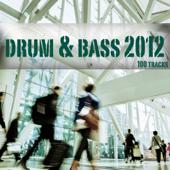 Drum & Bass 2012 - 100 Tracks