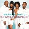 A Family Business, Brandy & Ray J