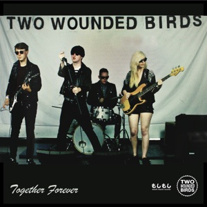 Two Wounded Birds - I Think the World of You