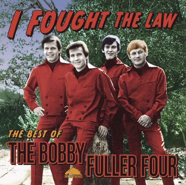 Cover art for I Fought The Law