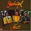 Shahgol Persian Music