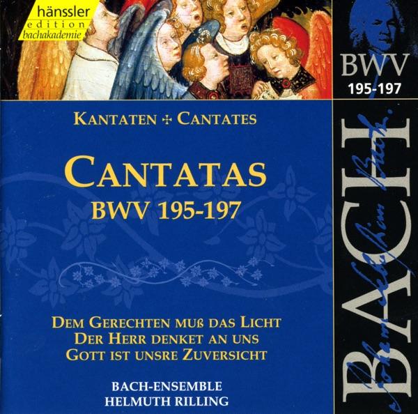 Bach, J.S.: Cantatas, Bwv 195-197