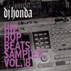 Hip Hop Beats Sampler Vol 8