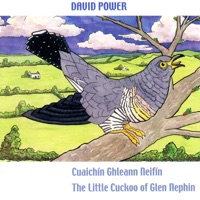 Cuaichin Ghleann Neifin (The Little Cuckoo of Glen Nephin) by David Power on Apple Music