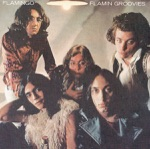 Flamin' Groovies - Gonna Rock Tonite