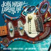Just a Memory - John Mayall