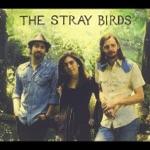 The Stray Birds - Wind & Rain