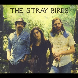 The Stray Birds - No Part of Nothin'
