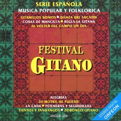 Serie Española: Festival Gitano - Gipsy Kings
