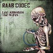 Raab Codec - Snowbound