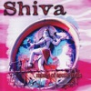 Shiva Music of South India
