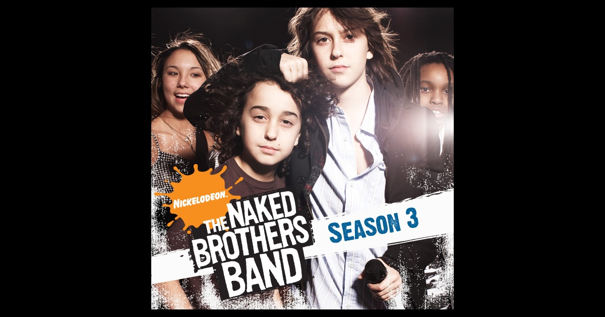 naked brothers band 2010
