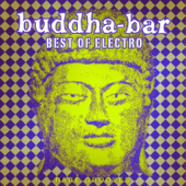 Buddha-Bar: Best of Electro - Rare Grooves