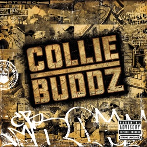 Collie Buddz - Come Around