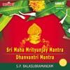 Sri Maha Mrityunjay Mantra Dhanvantri Mantra Divine Chants