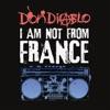 I Am Not from France, Don Diablo