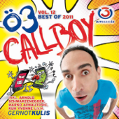 Ö3 Callboy Vol. 12