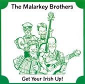 Malarkey Brothers - The Unicorn Song