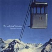The Ladybug Transistor - This Order Is Tall