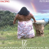 Israel Kamakawiwo'ole - Over The Rainbow / What A Wonderful World
