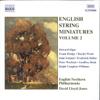 David Lloyd-Jones & English Northern Philharmonia - English String Miniatures, Vol. 2 kunstwerk
