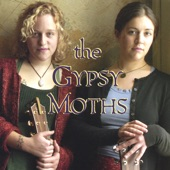 The Gypsy Moths - Fallacy