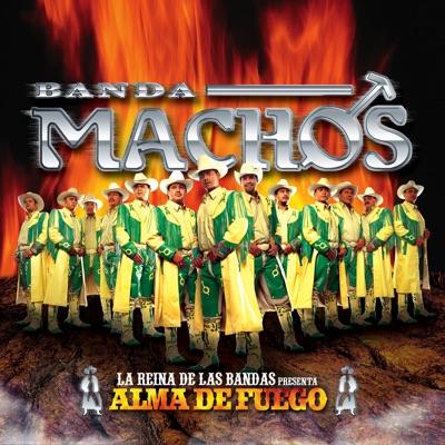 Alma de Fuego - Banda Machos
