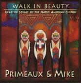 Primeaux & Mike - Amazing Grace (Navajo)