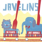 Javelins - Underwater Film Crew